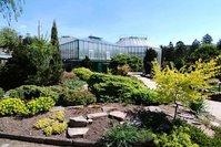 Botanická